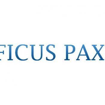 FICUS PAX in Bangalore