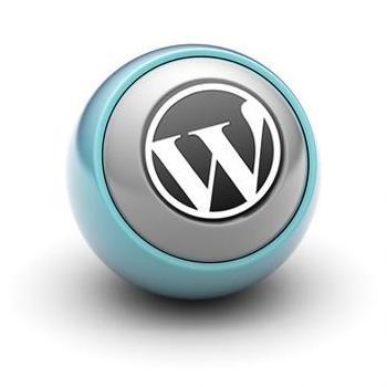 Wordpress Theme Development at Octopix in Kothamangalam