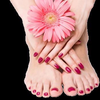 Pedicure & Manicure at Juwel & Juliet Herbal Beauty Parlour & Ladies Tailoring in Perumbavoor