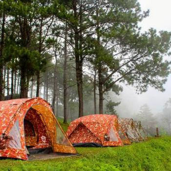 Tent Camping Seasonal at Munnar Rest And Lodging in Idukki