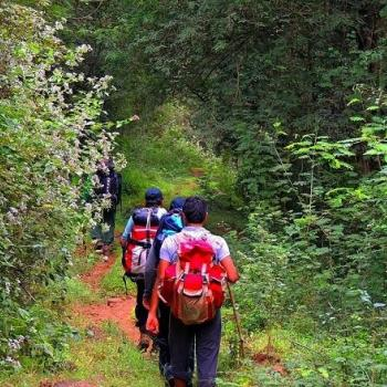 Trekking- short & long at Munnar Rest And Lodging in Idukki