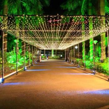 Floral & Lighting Decor at Ring n Roses Events in Kothamangalam