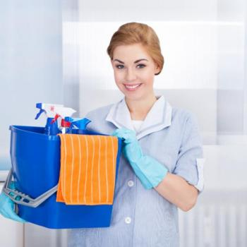 Home Maid Services at Thannickal Employment Service in Thodupuzha